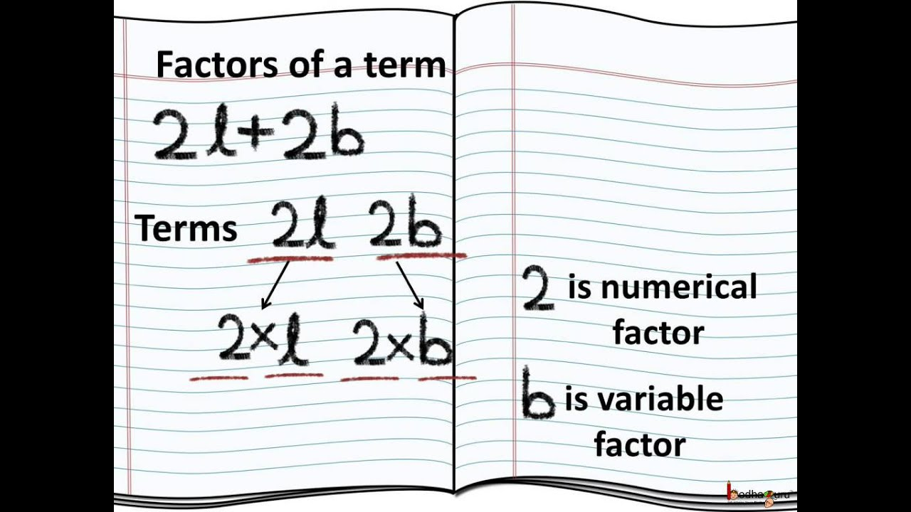 math - what are algebraic term  factor and coefficient - english