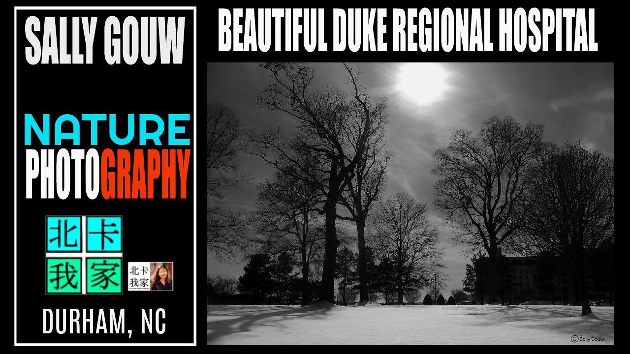 PEMANDANGAN CANTIK DIBELAKANG RUMAH SAYA/北卡我家 附近/Beautiful scenery at Duke  Regional Hospital
