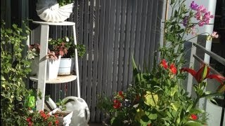 Make A Tall Three Shelf Plant Stand