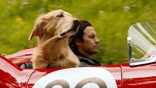 'The Art of Racing In The Rain' Official Trailer (2019) | Milo Ventimiglia, Amanda Seyfried