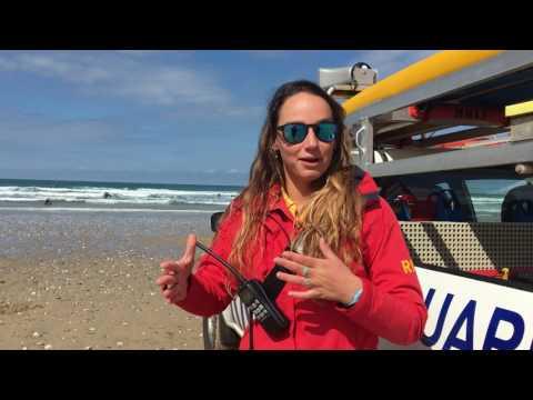 Cornwall Lifeguard Warnings On Weever Fish