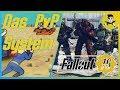 Fallout 76: Das PvP-System / So läuft es ab! / KOPFGELDJÄGER!