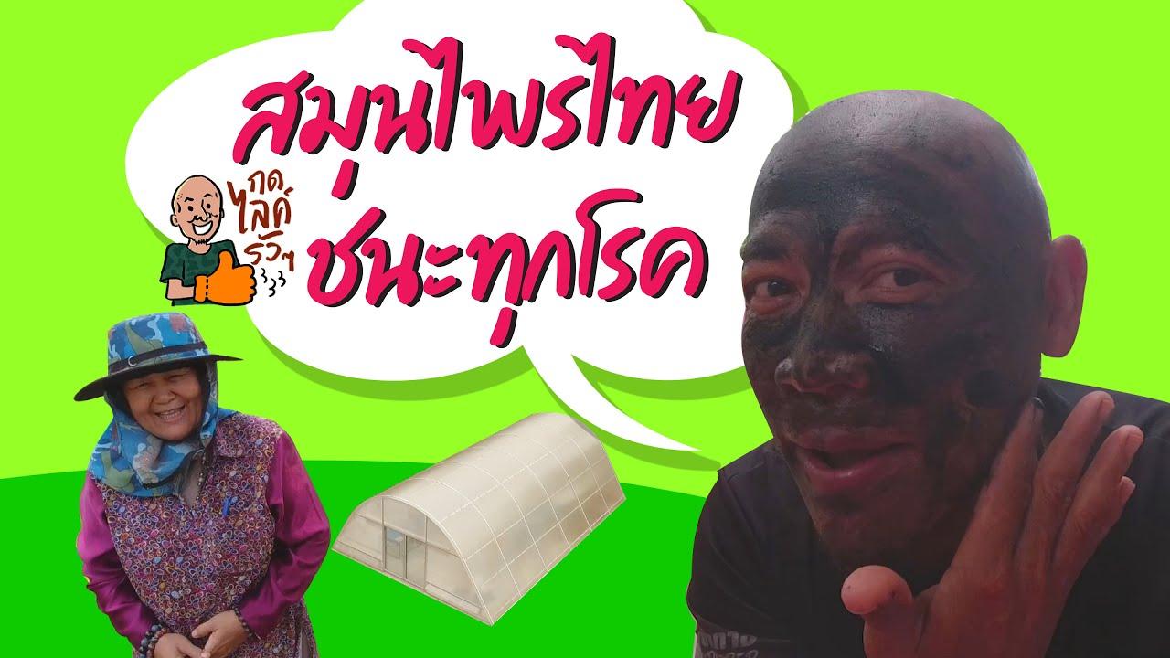 สมุนไพรไทย ชนะทุกโรค