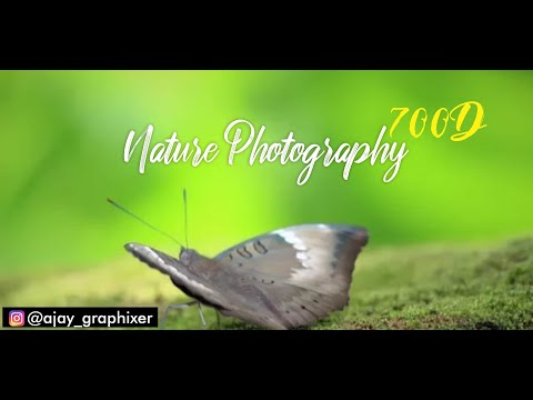 Photography by Ajay | Nature Photography | canon 700d