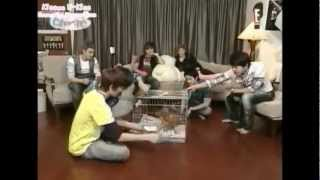 Kpop funny accidents 2
