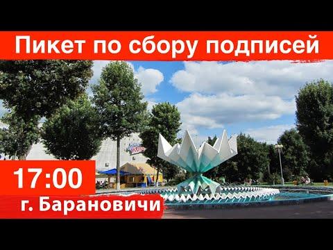 Пикет по сбору подписей в Барановичах за Тихановскую