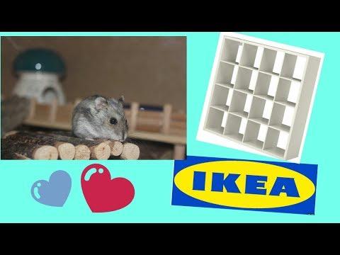 diy vlog hamstergehege selber bauen maja s hamsterpa doovi. Black Bedroom Furniture Sets. Home Design Ideas