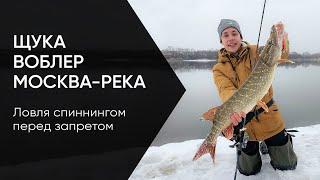 ВОТ ЭТО РЫБАЛКА Москва река раздаёт бонусы Ловля щуки на спиннинг весной