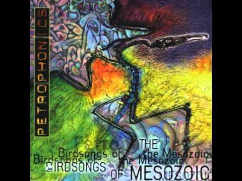 Birdsongs Of The Mesozoic Magnetic Flip