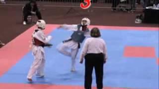 taekwondo ko top 20