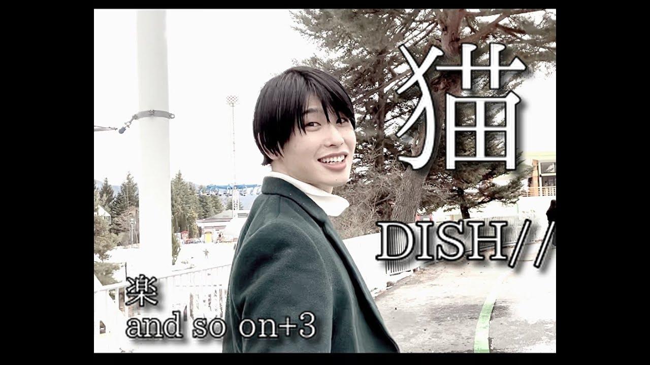 【歌ネタ】猫 DISH//【僕たちがやりました】ボカロで歌ってみた「covered by 楽 and so on+3」