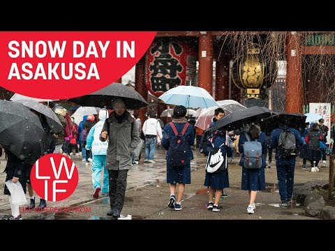 Snow Day in Asakusa (Senso-ji)