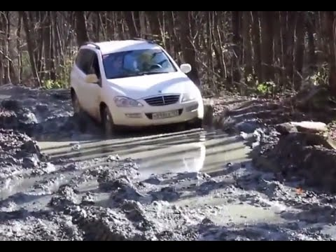ssangyong rexton vs kyron vs actyon off road 4x4 test. Black Bedroom Furniture Sets. Home Design Ideas