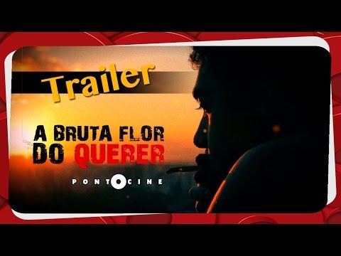 Trailer do filme Flor do Desejo
