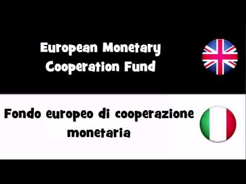VOCABULARY IN 20 LANGUAGES = European Monetary Cooperation Fund