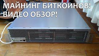 Майнер биткойнов на 5 Терахешей, видео обзор!