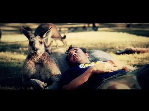 Kangaroo - Leo Aberer - Official Video