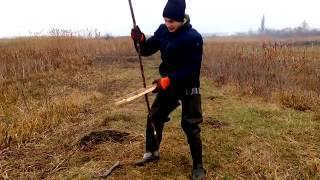 Охота на ондатру капканами на плотики