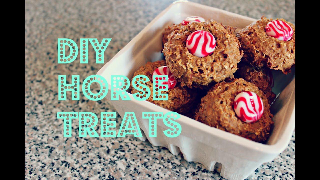 Diy horse treats youtube solutioingenieria Image collections