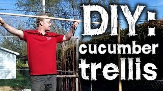 Diy Cucumber Trellis - Straight To The Point