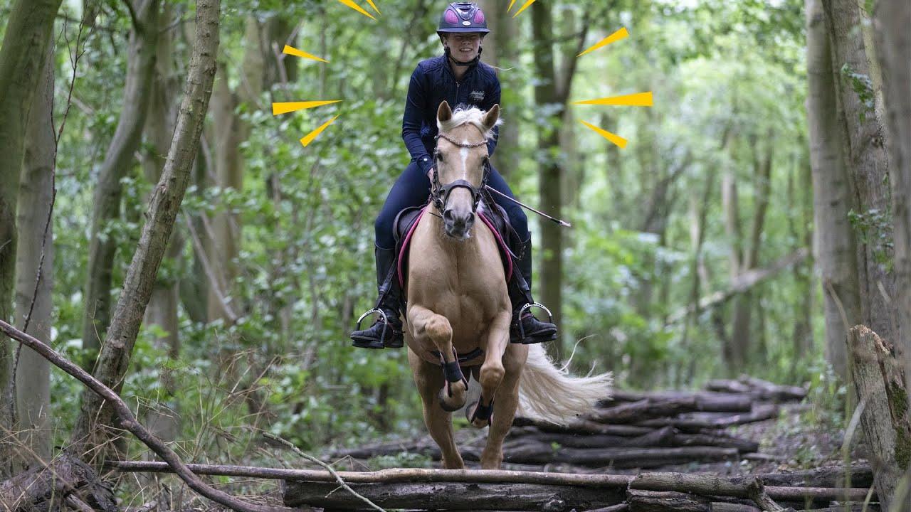 Springen in het bos met Blondie * Hart voor Paarden *