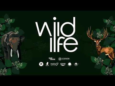 WildLife Interactive Media Exhibition 2017