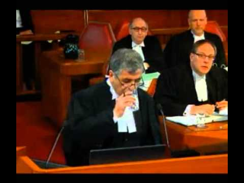 Heydary Hamilton PC - Supreme Court of Canada Appearance