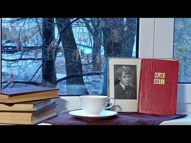 Изображение предпросмотра прочтения – ВикторияГорецкая читает произведение «Жизнь - обман с чарующей тоскою» С.А.Есенина