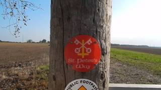 St  Peter's Way: Purleigh To Steeple 12 October 2015