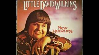 """LITTLE"" DAVID WILKINS - BUTTER BEANS (1974)"