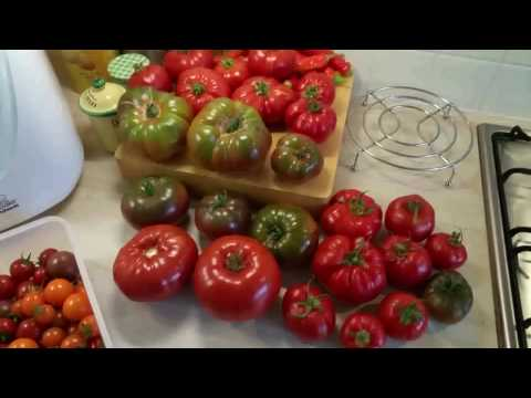 Allotment Days #20 Champion Tomatoes and Bean Preservation