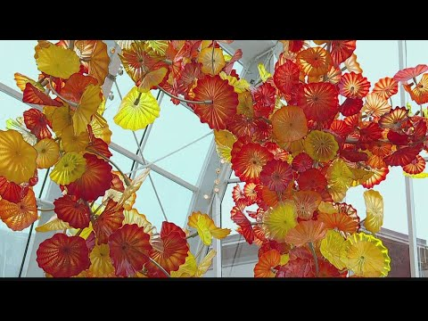 Seattle Week: Space Needle and Chihuly Garden and Glass