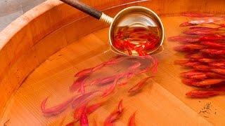 Melukis Ikan 3D Fish Painting