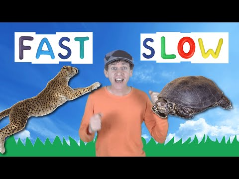 Fast Slow Action Song for Kids | Learning Opposites | Learn English Children