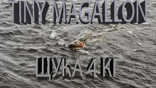 Щука 4 кг. Tiny Magallon. Калининград.(Мы вконтакте http://vk.com/ryballka instagram https://www.instagram.com/spinning_my_life/ подписывайтесь на канал SpinningLife ..., 2014-12-02T19:23:39.000Z)