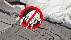Wenn Milben im Bett Allergien auslösen