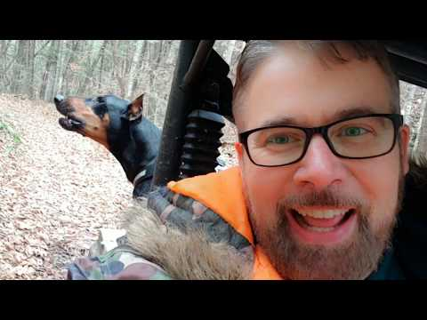 Doberman Pinscher Amazing Run DOG ANXIETY and YouTube Trolls