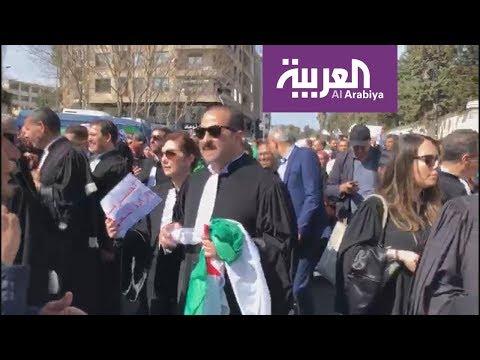محامو الجزائر ينحازون للمتظاهرين