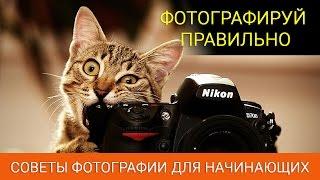 ФОТОГРАФИРУЙ ПРАВИЛЬНО | Советы по фотографии для начинающих + видео по инстаграм(ФОТОГРАФИРУЙ ПРАВИЛЬНО | Советы по фотографии для начинающих + видео по инстаграм http://tehside.ru/ Хотите фотогра..., 2015-07-09T12:50:49.000Z)
