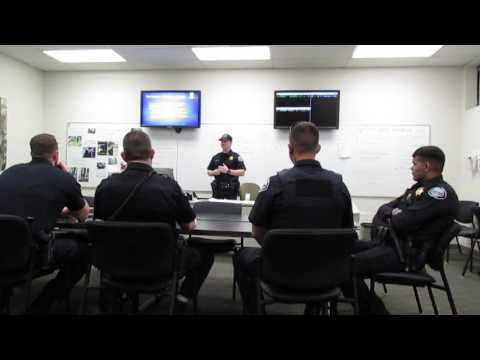 Law Enforcement Use of Force and Public Perception