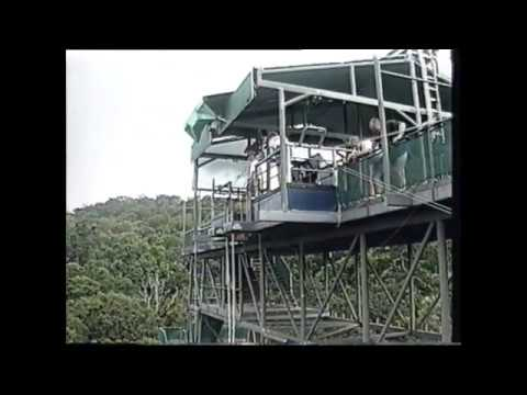 Bungy Jump in Cairns, Australia