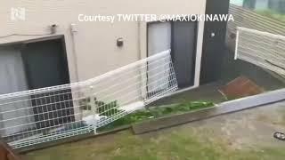 Powerful Typhoon Trami heads to flood battered Japan