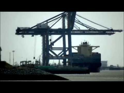 Worlds largest container cranes