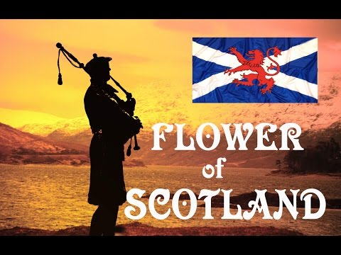 Flower of Scotland ~Lone Piper~ Bagpipes.