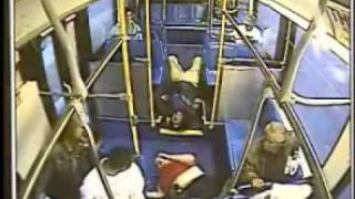 San Antonio VIA bus crash-cam videos