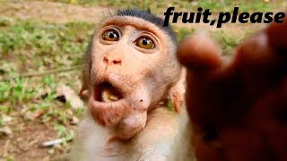 Funny baby Bronx asks for more food cos his fruits is stolen by mom Bryana, Bronx is hilarious