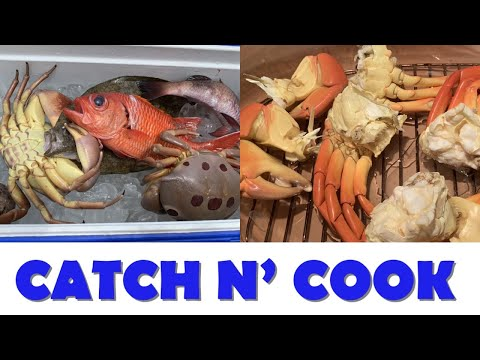 Shore Dive With Fish And Dive Hawaii + 7-11 Crab Catch N Cook