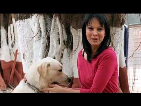 Dog Training School In Bangalore