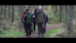 Interacting with Wildlife in Central Scotlands woods and forests