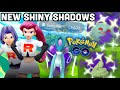 new shiny shadows jessie amp james battles in pokemon go shadow suicune now available